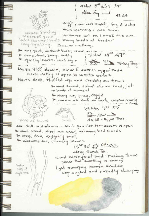 Page from Dennis's nature notebook that records details over three days.