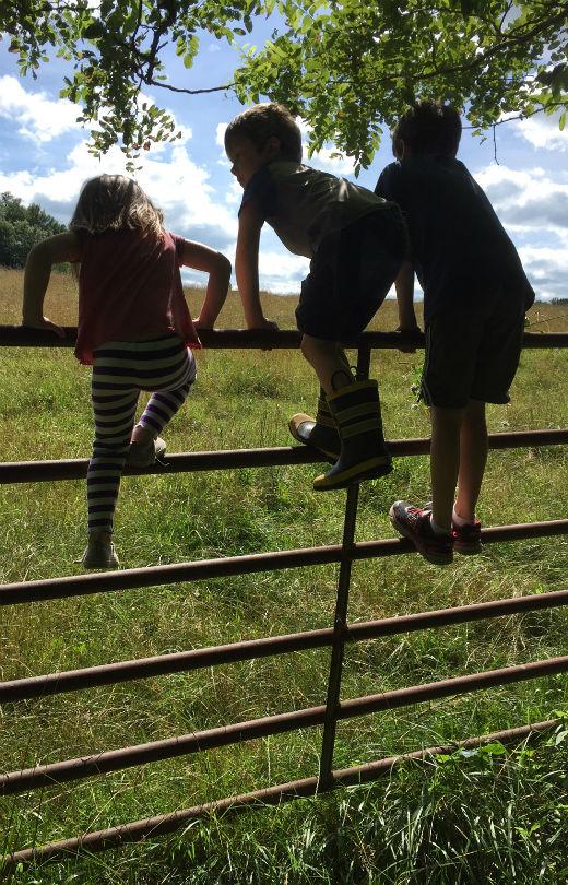 Vasaune kids on fence