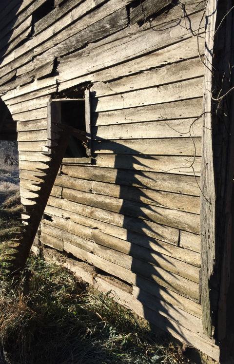 Saw, sawn, shadow on Roger Rd. near Left Bank community.