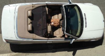 convertible Loft