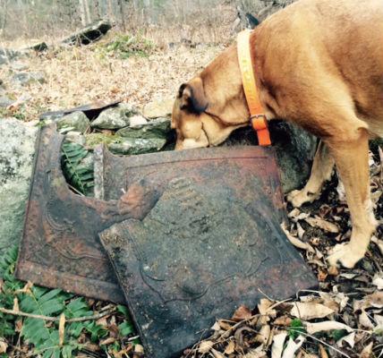 tobacco barn + dog